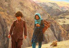 « Wolf and Sheep » : une fable émouvante qui nous emmène en Afghanistan