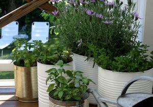 5 idées de jardin pour mini balcon