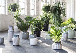 Plantes : que vont-elles devenir pendant mes vacances ?