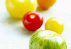 Anciennes variétés de tomates