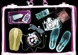 Dans la valise des fashionistas