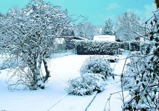 Pr parez votre jardin affronter l 39 hiver elle d coration for Decoration exterieur hiver