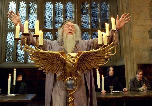 « Les animaux fantastiques » : quel célèbre acteur va incarner Albus Dumbledore jeune ?