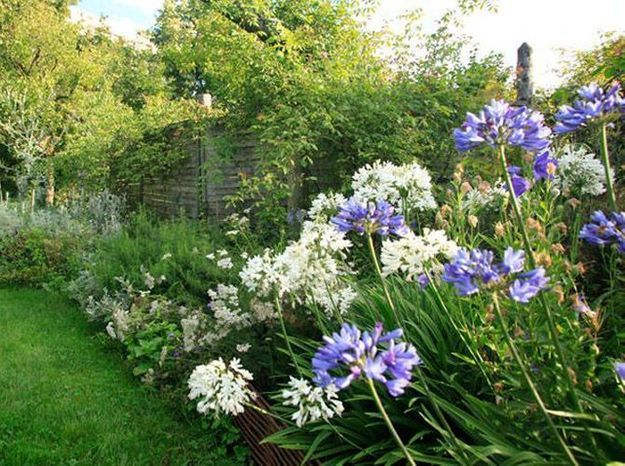 Un massif fleuri plein de couleurs pendant six mois elle for Massif deco jardin