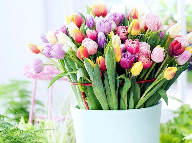 1 fleur, 1 style déco : votre fleur préférée révèle votre style déco