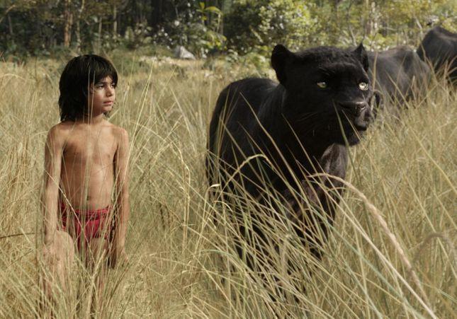 Films récents : notre cru des meilleurs long-métrages de 2016