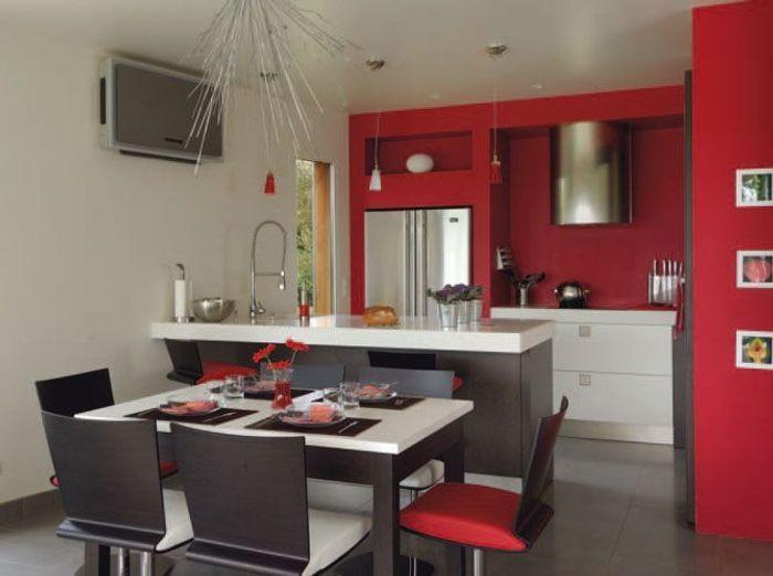 Les nouvelles cuisines vivre elle d coration for Couleur pour cuisine ouverte