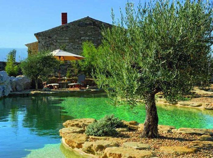 Les piscines naturelles, retour aux sources