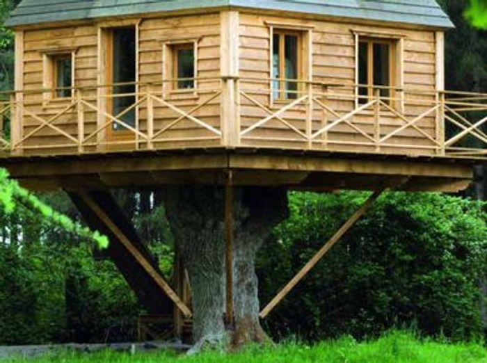 Trouvez la cabane de vos r ves elle d coration - Cabanes dans les arbres construction deco ...