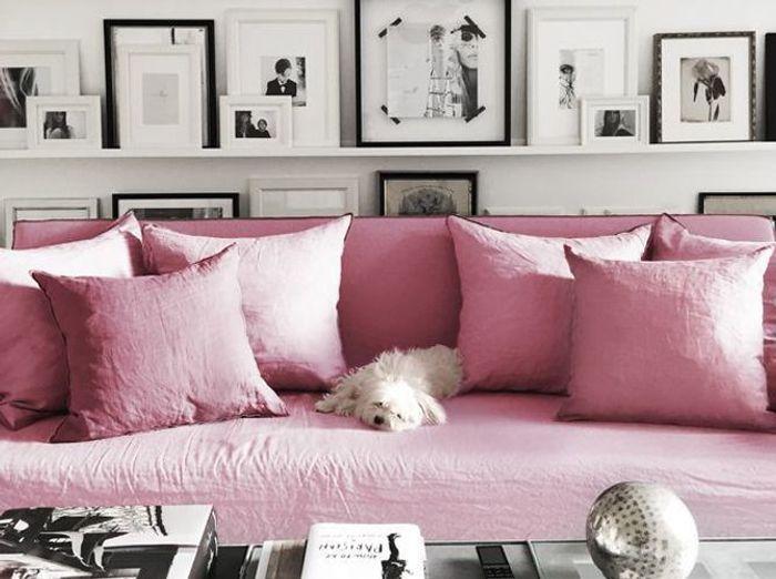 Canapé rose moelleux