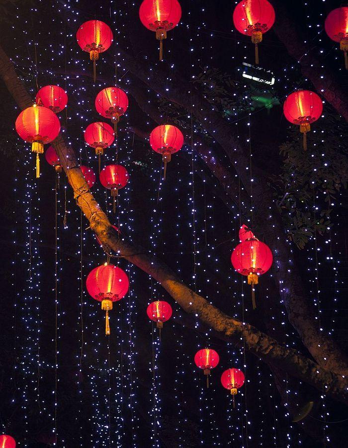 nouvel an chinois quelles recettes pour f ter le nouvel an chinois elle table. Black Bedroom Furniture Sets. Home Design Ideas