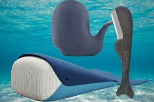 Micro-tendance : la baleine est de sortie !