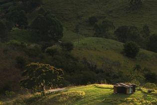 Une cabane écolo en plein cœur de la nature brésilienne