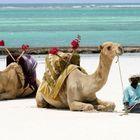 Diani Beach, au Kenya